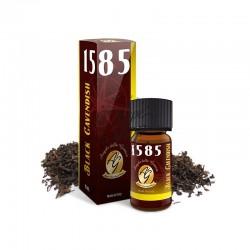 Black Cavendish 1585 Aroma...